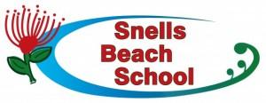 SBS Logo white background