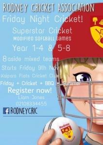 Cricket Flyer